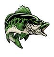 big largemouth bass fish vector image vector image