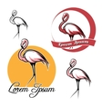 Flamingo set vector image vector image