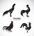 group rooster design vector image vector image