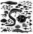 set handdrawn underwater wildlife vector image