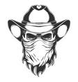 skull cowboy head vector image