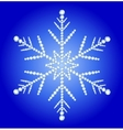 Snowflake jewelry vector image vector image