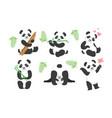 adorable pandas characters set cute animals