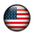 icon flag button usa isolated vector image vector image