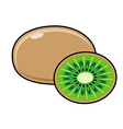 Kiwi on a white background Sliced fruit vector image
