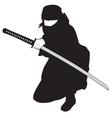 Ninja black vector image