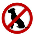 prohibition dog sign vector image