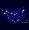 constellation of capricorn in a starry blue sky vector image