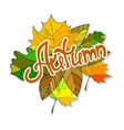 Colorful autumn background Hand drawn doodles vector image