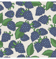 Doodle blackberries seamless pattern vector image vector image