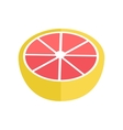 Grapefruit In Flat Style vector image vector image