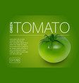 green unripe tomato on a green background vector image vector image