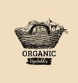 organic vegetables poster farm fresh eco vector image vector image