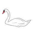 simple swan isolated on the wite vector image vector image
