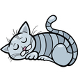 sleeping cat cartoon vector image vector image