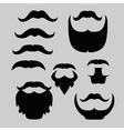 Props set Mustache and beard isolated vector image
