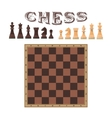 set of chess figures Piece and board vector image