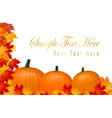 autumn pumpkins vector image vector image