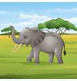 cartoon elephant standing in savannah vector image vector image