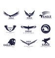 eagles or hawk falcon signs for company brand vector image vector image
