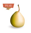 isolated picture of pear fruit 3d pear vector image vector image