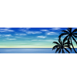 Palm Trees vector image vector image