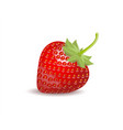 strawberry isolated on white background clipping vector image vector image