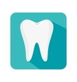 teeth dental care isolated icon vector image vector image