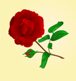 Twig Purple Rose and bud vintage vector image vector image