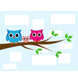 cute owls couple with baby owl vector image