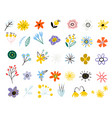 colorful floral collection set summer vector image vector image