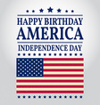 Happy Birthday America vector image vector image