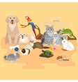 Home pets set cat dog parrot goldfish hamster vector image vector image