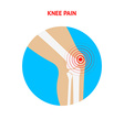 Knee pain Knee pain icon isolated on white vector image