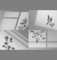 overlay window shadows realistic leaves vector image