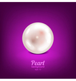 Pearl vector image vector image