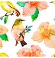 tropical birds and flowers white-eye bird vector image