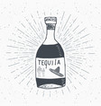 vintage label hand drawn bottle of tequila vector image