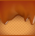 waffles with caramel dessert background vector image