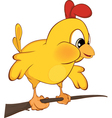 Cute chicken Cartoon vector image vector image