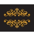 Elegant luxury vintage gold floral border vector image