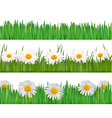 fresh spring banner vector image
