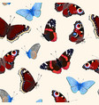 pattern with high detailed vivid butterfly vector image vector image