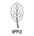 apple leaf icon simple black style vector image vector image