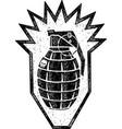 danger granade vector image vector image