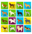 dog pooch breed and other web icon in flat vector image