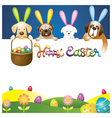easter eggs in basket with various dogs as bunnies vector image vector image