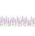 lavender flowers frame border seamless pattern vector image
