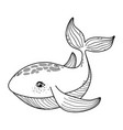 outline cute whale tropical sea animal vector image