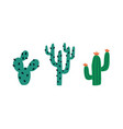 set various spiny desert plants or cactuses vector image